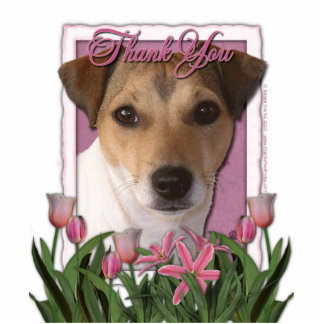 Thank You - Pink Tulips - Jack Russell Standing Photo Sculpture