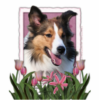 Thank You - Pink Tulips - Sheltie Standing Photo Sculpture