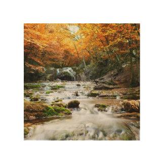 The beautiful waterfall in forest, autumn wood prints