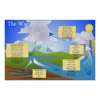 The Water Cycle Poster
