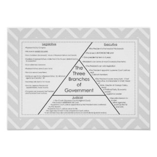 Three Branches of Government Poster
