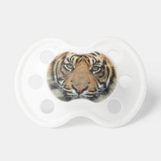 Tiger Pacifier