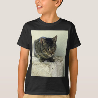 Tiger Six Toe T Shirt