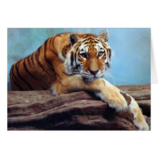 """Tiger """"Thinking of You"""" Greeting Card"""