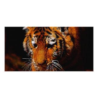 Tigers eyes personalised photo card