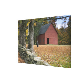 Tire swing along a road in Southern Vermont, Gallery Wrap Canvas