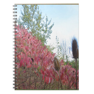 Triangle Colorful Nature Print Goodluck warm fall Note Books