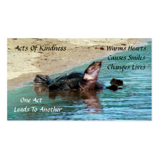 Turtle Random Acts of Kindness Card Pack Of Standard Business Cards