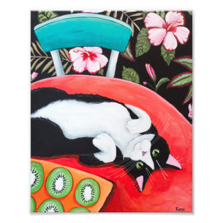 Tuxedo Cat and Kiwis in the Kitchen Photograph