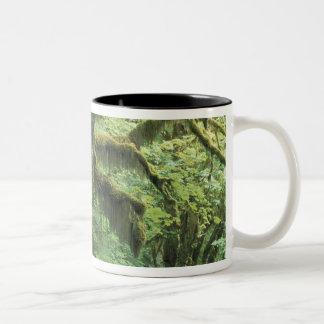 U.S.A., Washington, Olympic National Park. Two-Tone Mug