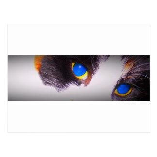 Unique Trendy Modern Eye Catching design Postcard