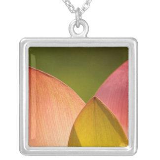 United States, DC, Washington, Kenilworth 3 Square Pendant Necklace