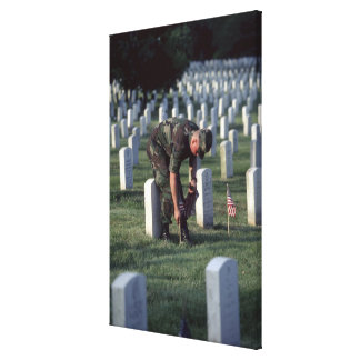 United States, State of Virginia, Arlington. Stretched Canvas Print