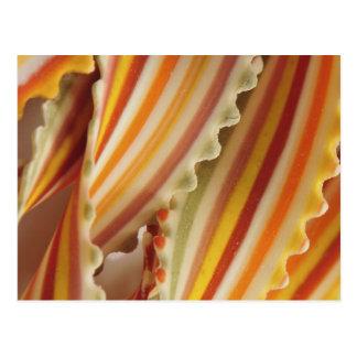 USA. Close-up of dried rainbow pasta noodles. Postcard