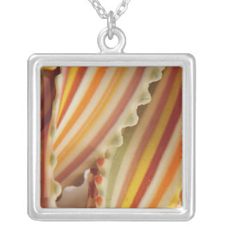 USA. Close-up of dried rainbow pasta noodles. Square Pendant Necklace