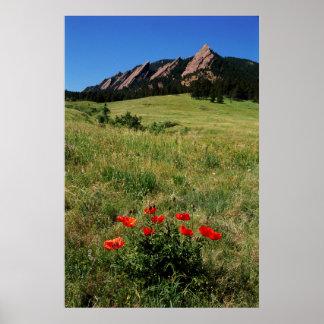 USA, Colorado, Boulder. Flatirons and poppies Poster