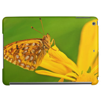 USA, Colorado. Skipper butterfly on sunflower