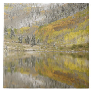 USA, Colorado, White River National Forest, 2 Large Square Tile