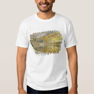 USA, Colorado, White River National Forest, 2 Tshirt