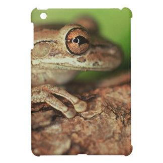 USA, Florida, Cuban Tree Frog. iPad Mini Cases