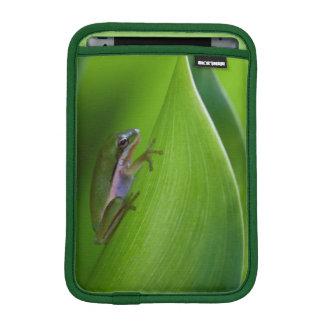 USA, Georgia, Savannah, Tiny Frog On A Leaf iPad Mini Sleeves