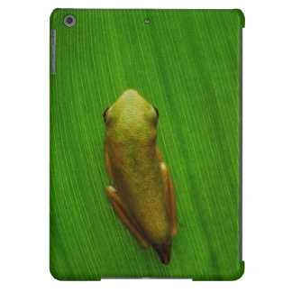 USA, Georgia, Savannah, Tiny Frog On Leaf Cover For iPad Air