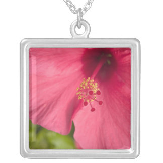 USA, Hawaii, Kauai, Hibiscus Square Pendant Necklace