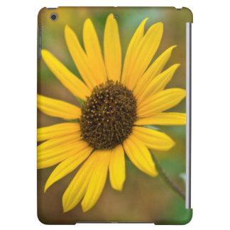 USA, Kansas. Wild Sunflower