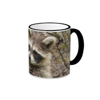 USA, Minnesota, Sandstone, Minnesota Wildlife 16 Ringer Mug