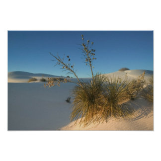 USA, New Mexico, White Sands National 3 Poster