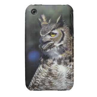 USA, New Mexico, Wildlife West Nature Park. iPhone 3 Cover