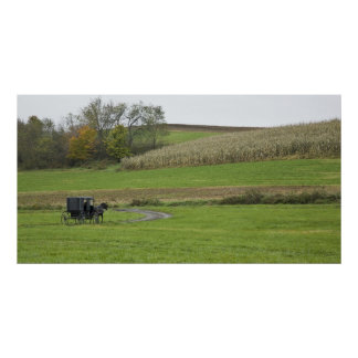 USA, Northeastern Ohio. Amish buggy on farm Poster