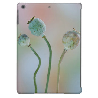 USA, Washington. Close-Up Of Colorful Poppy Seed iPad Air Cases