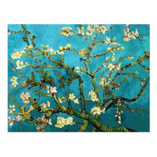 Van Gogh Blossoming Almond Tree Fine Art Postcard