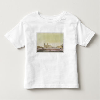 View of the main square in Mexico City (colour eng T Shirt