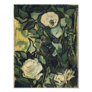 Vincent Van Gogh White Roses Rose Vintage Art Photograph