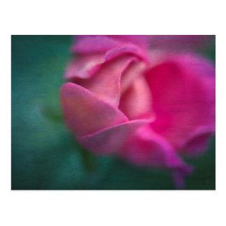 Vining Geranium Bud, Digitally Altered Postcard