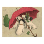 Vintage 4 Dogs Under Umbrella Postcard