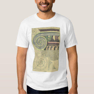 Vintage Architecture; Capital Volute by Vignola Shirts