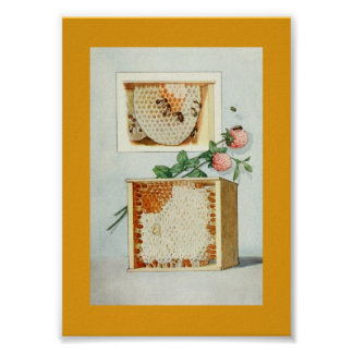 Vintage Honey Comb, Bees, Beeswax, and Pink Clover Poster