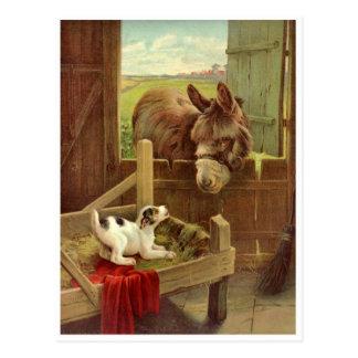 Vintage Horse and Dog Farm Scene Postcard