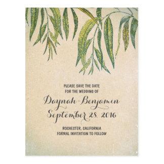 Vintage rustic gum tree leaf save the date postcard