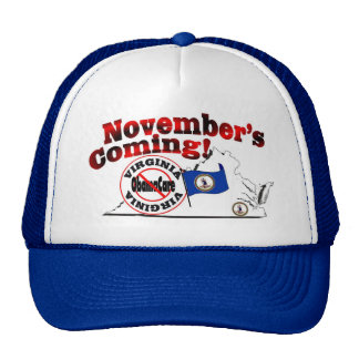 Virginia Anti ObamaCare – November's Coming! Cap