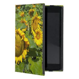 WA, Kittitas County, Sunflower Field iPad Mini Cases