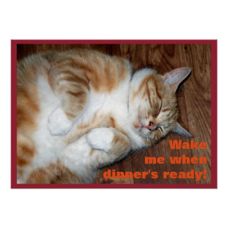 Wake me when dinner's ready! poster