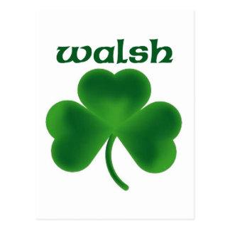 Walsh Shamrock Postcard