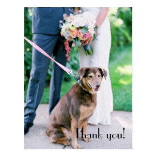 Wedding Thank You Post Card