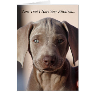 """Weimaraner """"You Are The Best"""" Greeting Card"""
