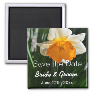 White and yellow daffodil flower save the date square magnet