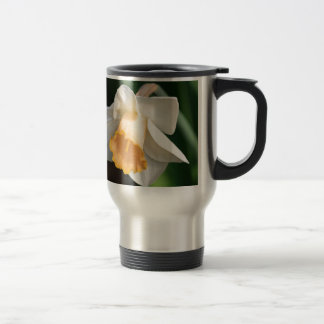 White and Yellow Daffodil Flowers for Floral Lover Stainless Steel Travel Mug